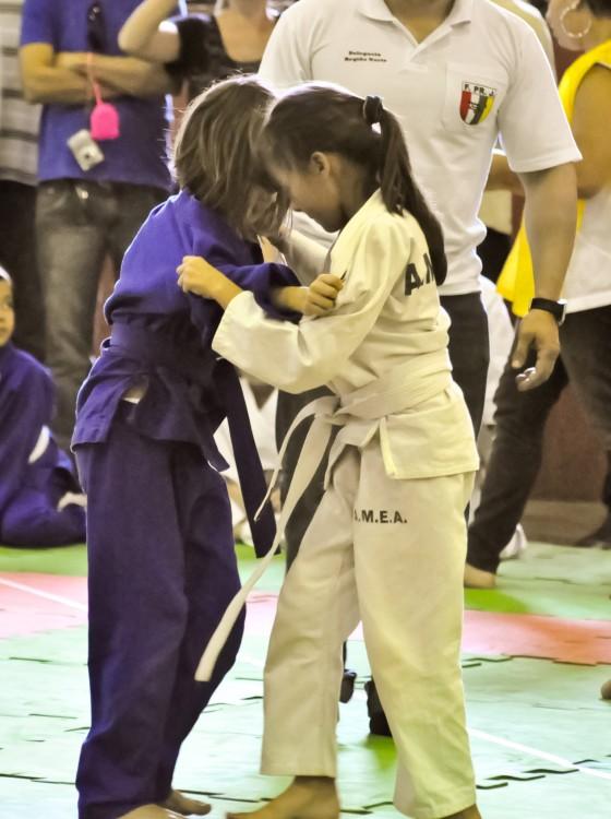 atividade-judo2