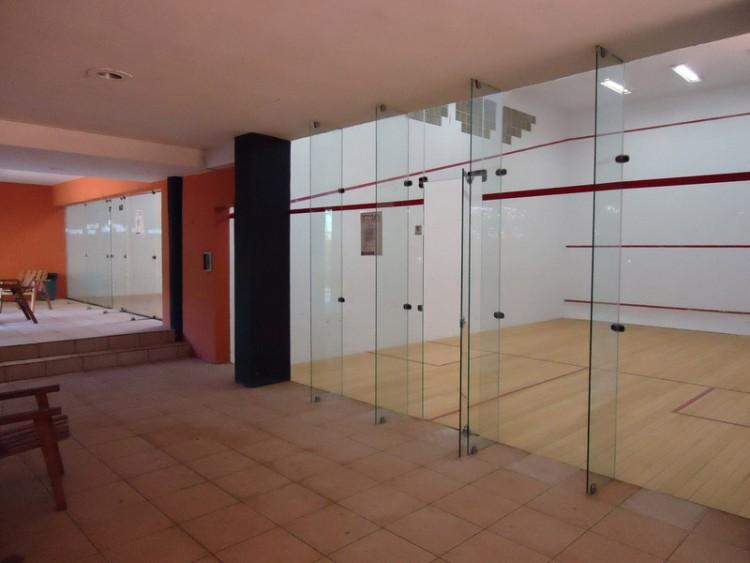 quadra-squash2